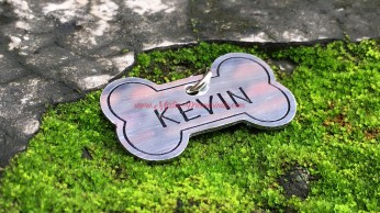 Kevin 01_marked